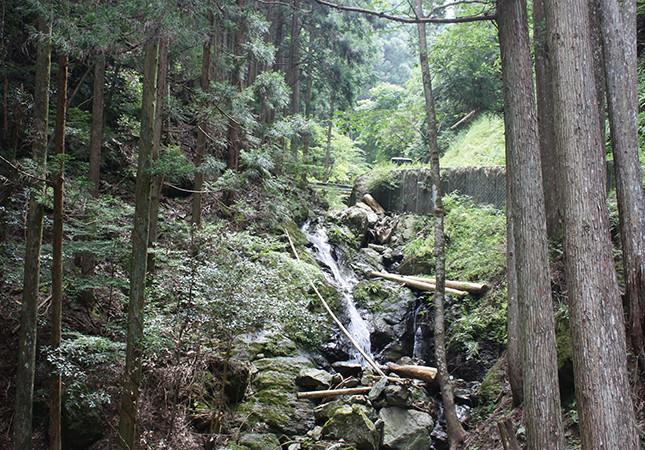フロウの滝