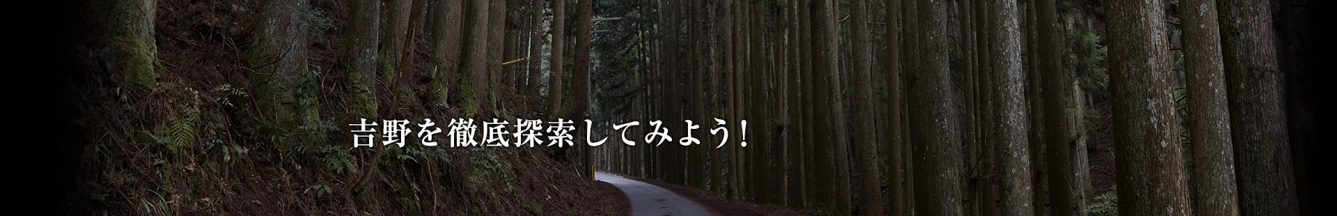 森に抱かれ、吹く風に癒しを感じる